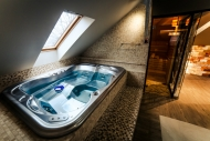 Marconio Wellness Club - Đakuzi i sauna