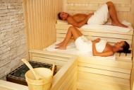 Sauna - Palisad
