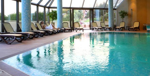 Hotel Premier Aqua Vrdnik