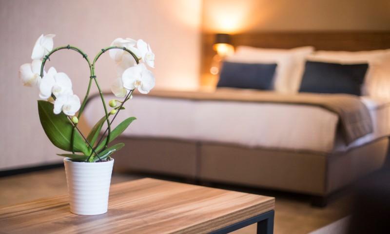 Hotel Slatina - Soba